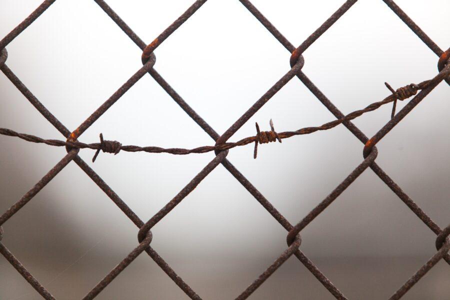 Co łączy więzienie ialeksytymię?